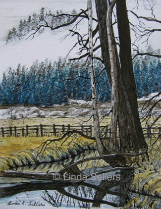 """Salmon Trail, Lumby"" watercolour & ink on paper, 5.5""X7.5"" $75"