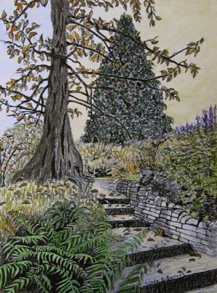 """Irish Garden"" watercolour and ink; 8""X6"" SOLD. Prints available $35."